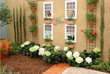 jardin da minha casa