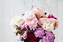 TOP FLORISTS OF INSTAGRAM