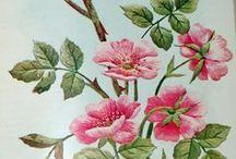 kvety výšivky