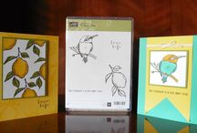 Stampln' Up! 2015 Spring/Summer and SAB / Projects made using products in the Stampin' Up! Spring/Summer Catalogue or the Free products in the Sale-A-Bration (SAB) Catalogue