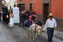 Vida en/Life in San Miguel