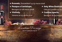 Cantina Dionigi / La Cantina Dionigi produce vino fin dal 1896 quando Gabriele si trasferì assieme alla sua famiglia, da Assisi a queste suggestive colline situate nel comune di Bevagna.