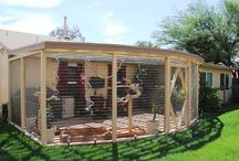 Rabbit Accommodation / Get inspired with creative ideas for your rabbits accommodation. We have moved on from the hutch era! A hutch is definitely not enough!