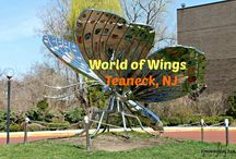 NJ Activities for Kids / Great place to go with the kids!