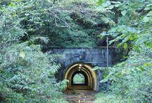 廃墟・廃道・廃トンネル