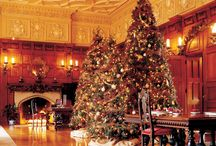 Biltmore Estate in Ashville, North Carolina / If you love cats this 250 room estate will fill you with great joy