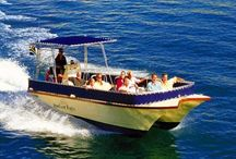 Boating - Cape Peninsula / Cape Town has 3 natural harbours on the Cape Point Route and boats head off in various directions from Simon's Town, Kalk Bay and Hout Bay. Leisure Cape Point boat cruises leave Hout Bay Harbour for Duiker Island to get up close and personal with the Cape Fur Seals.