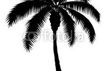 palm treez