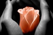 Romantika:-)