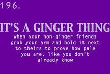 GINGERNESS
