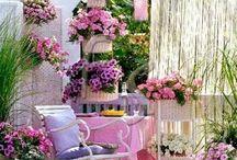 rozkvetlé balkony