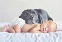 New born en hond