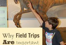 Field Trips / Virtual field trips