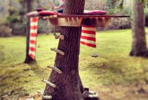 Tree Houses / by Taylor Nanni
