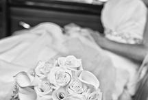 Engagement & Wedding / Engagement & Wedding Photos