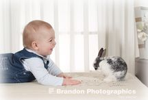 Bunny Portraits / Here Comes Peter Cottontail!