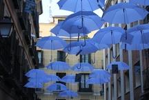 Blue / by Dario Scapitta Design