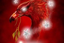 You'll Never Walk Alone / LFC all the way !