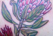 Tattoo Inspiration: Australian Flora & Fauna