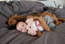 Doggy Life / Awesome stories for dog lovers