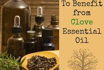 Clove / Anything and everything you need to know about Clove essential oil. Learn more on my blog @ www.thepricklypilotswife.com