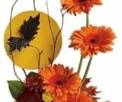 Halloween arrangements / floral arrangements for Halloween