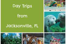 All things Jacksonville