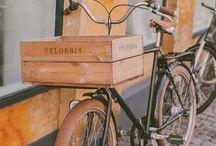 Bike Pesto