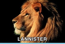 Game of Thrones / Hate the Lannisters Favourite character - Tyrion