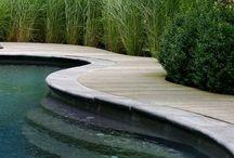 Tuin | Inspiratie (zwem)vijvers / Inspiratiebeelden voor zwemvijvers in de tuin