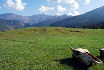 Best Trekking Tours in Himalayas
