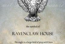 Hogwarts/Ilvermorny