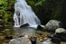 i love Priroda