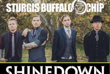 Shinedown Summer Tour