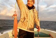Vitamin Sea Fishing / Fishing adventures