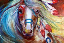 cavalos <3
