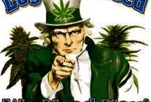 Weed Politics
