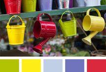 Color alro