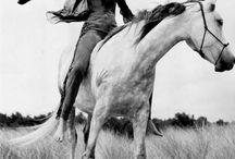 Mode et cheval / Les plus belles photos de mode réalisées dans l'univers des sports hippiques et équestres