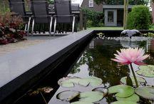 Waterspiegel / Waterspiegels in de tuin zijn de verbindende elementen tussen de tuin en de natuur. Weerspiegelen van de wolken, de zon of regen worden zichtbaar. Insecten, planten en dieren, leven komt in de tuin.