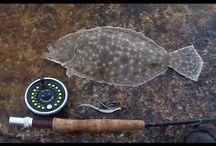 Flounder the Fuckwit