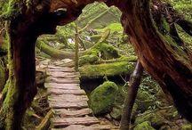 Fairy Places