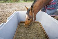 Paard vriendelijke oplossingen