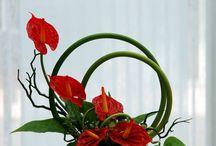 ikebana,aranžovanie