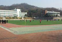 학교 축구장