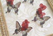 2 Смола бабочки