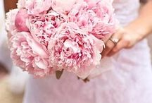 {VìE} Mauve Blooms / VìE- Noun \ˈvī\ The french word 'VìE' is translated to {life} in English. The experience of being fully alive and engaged in recognizing that beauty is all around us.   http://www.shopvieboutique.com/  http://www.facebook.com/thevieboutique