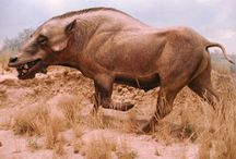 WHEN ONLY ANIMALS ROAMED THE WORLD / -and some younger species , now extinct