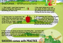 Edible plants / vegetable and herb gardening
