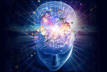 Epigenetics | Neuroplasticity